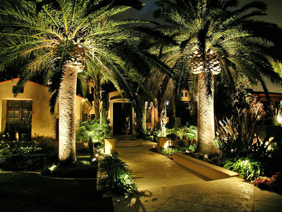 Landscape Lighting Ideas Trees : Landscaping lighting ideas for your front yard on a budget