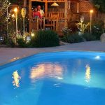 Landscaping Swimming Pool Lighting Ideas for Front Yard